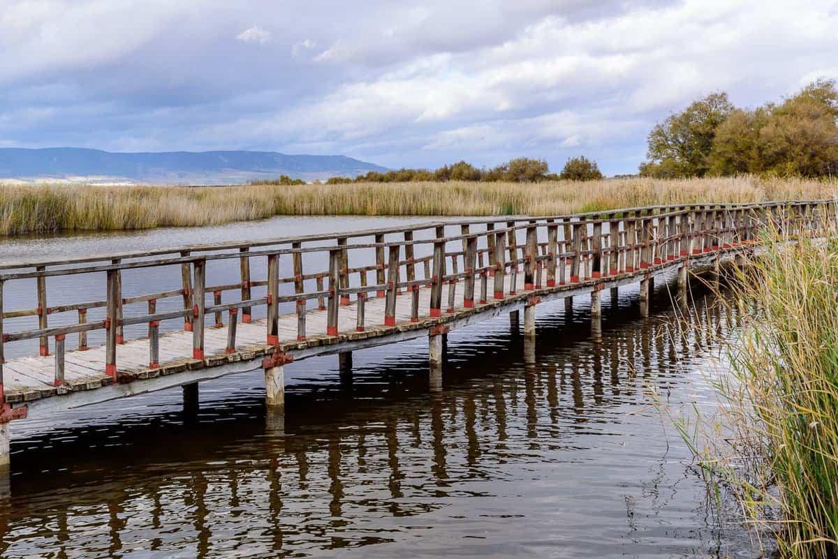 Rutas por las Tablas de Daimiel a través de las pasarelas de madera