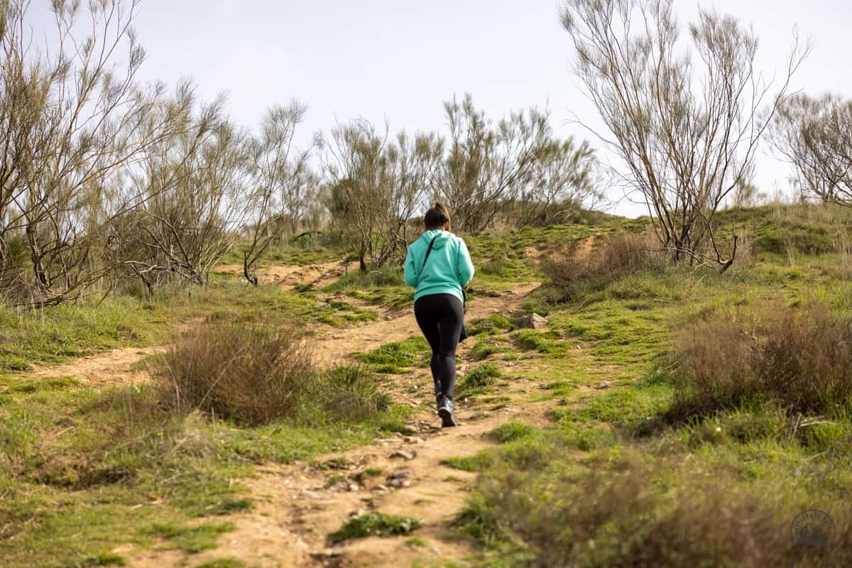 Ruta a las Cárcavas de Pontón de la Oliva