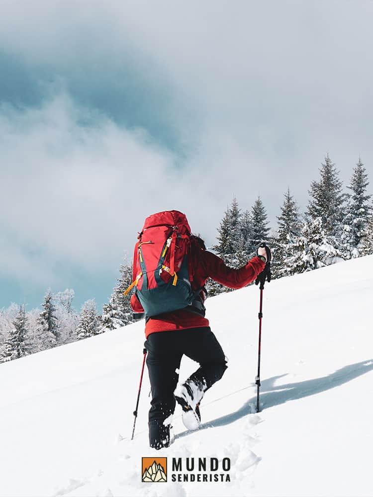 Los bastones de trekking mejoran el impulso en los ascensos, haciéndolos más fáciles.