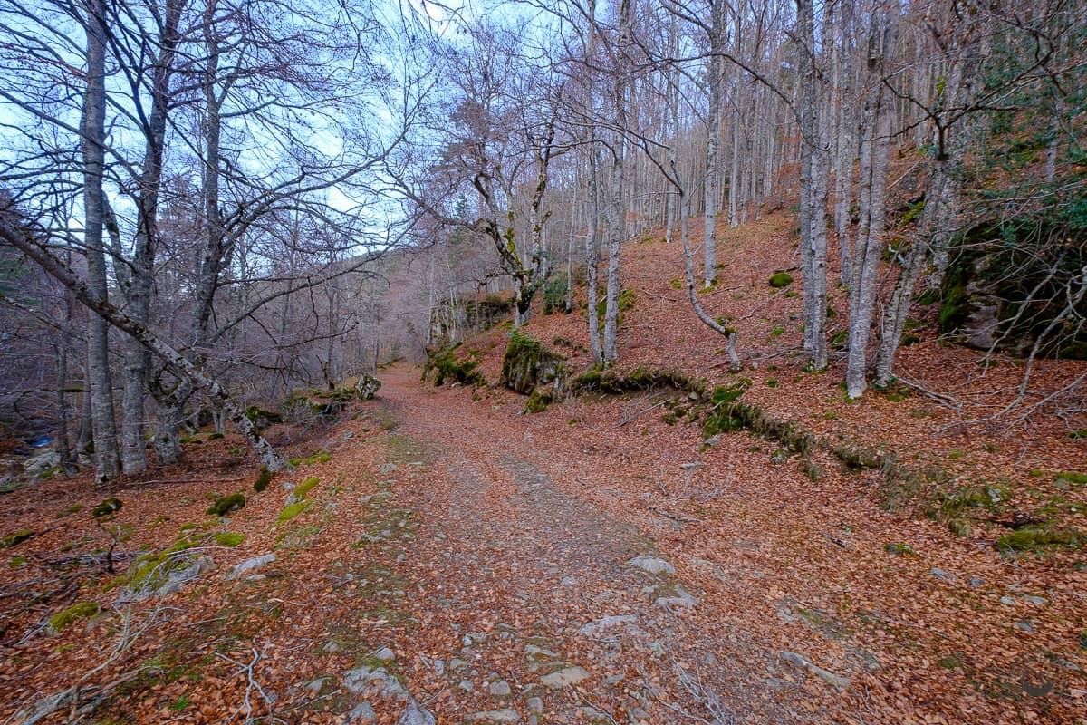 Ruta por el Sendero de las Cascadas del Puente Ra en otoño