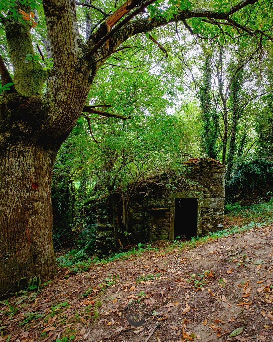 Ruta por la Fraga de Catasós en Lalín, Pontevedra