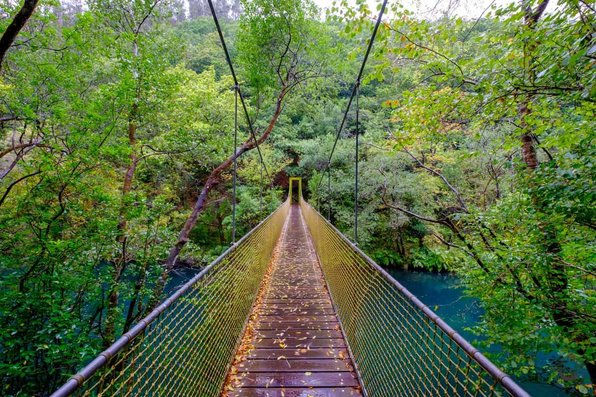 Puente colgante de la ruta por las Fragas do Eume