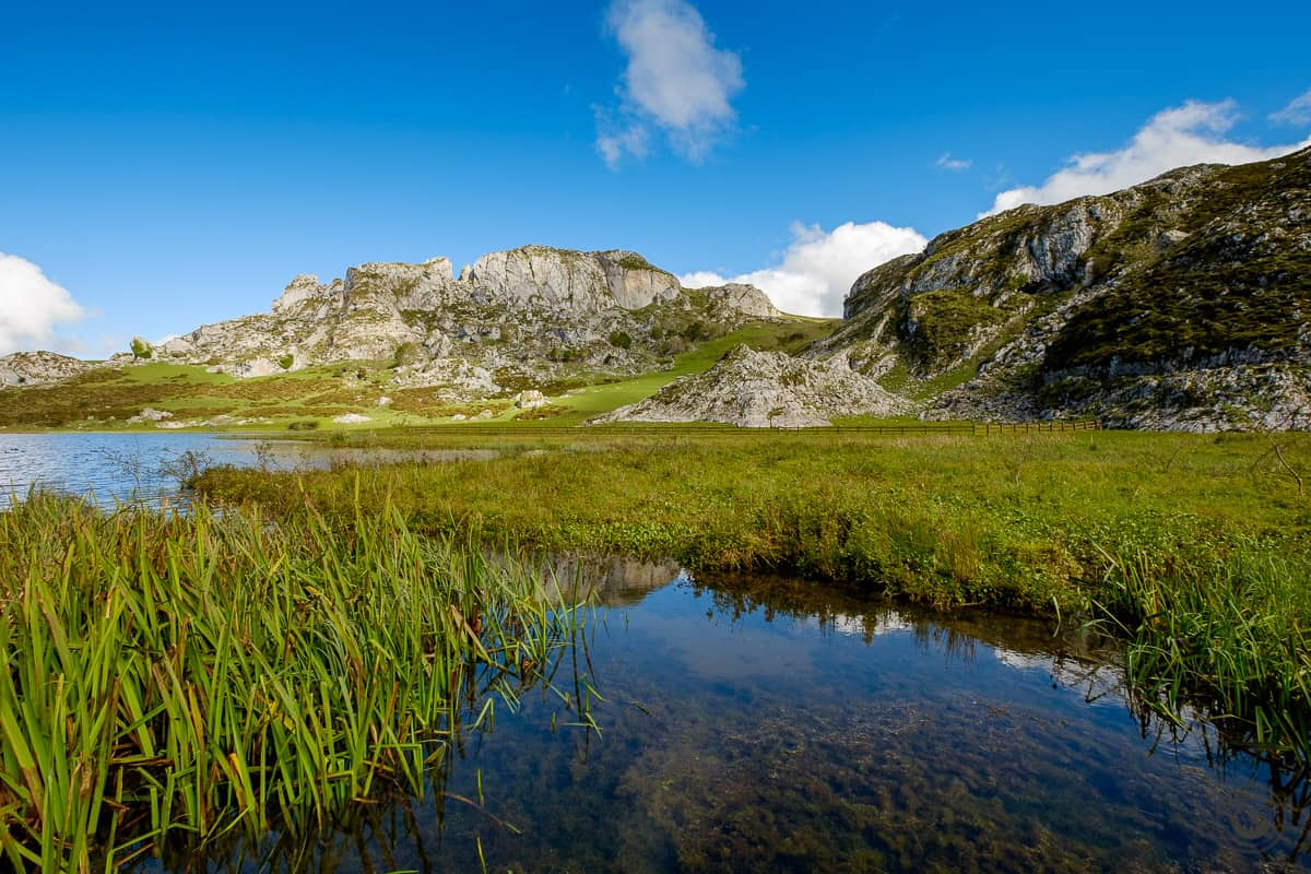 Los Lagos de Covadonga: Lago de La Ercina