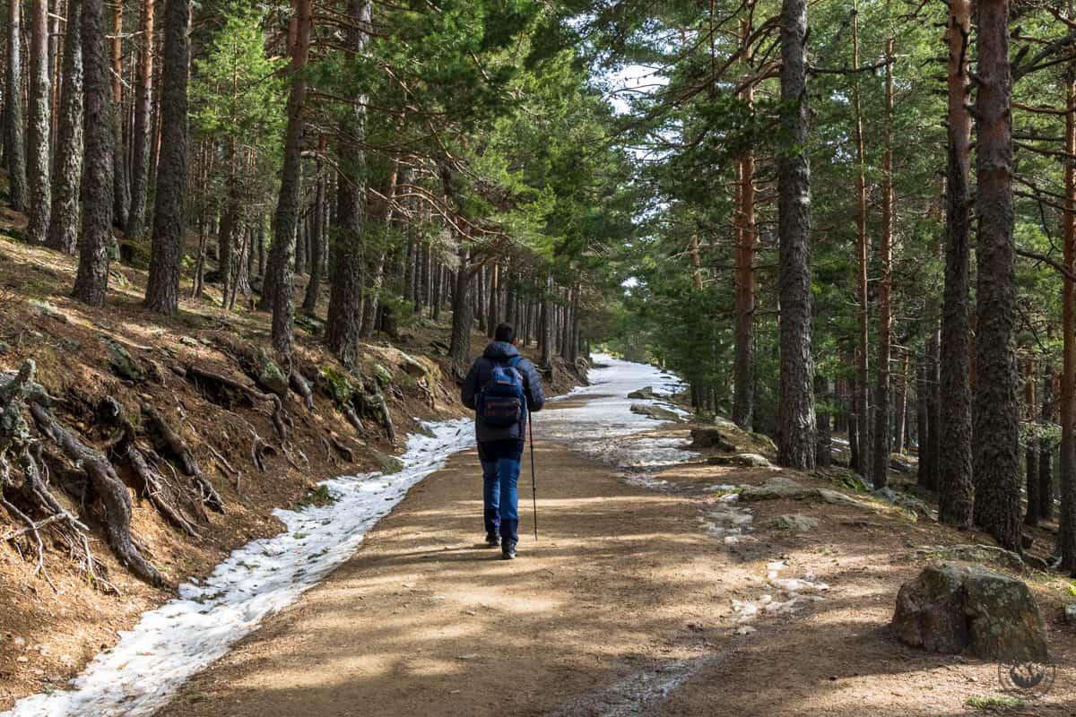 Ruta a la Laguna Grande de Peñalara desde Cotos